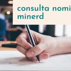 Consulta del estado de cuenta y nómina Minerd